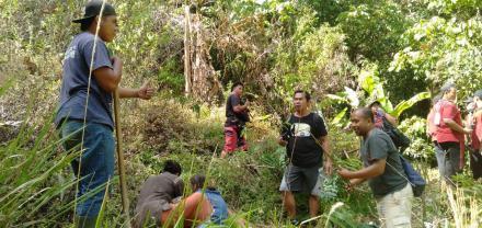 Penanaman Pohon di Hutan Desa bersama Pokdarwis Giri Kencana dan Mahasiswa Undiksha
